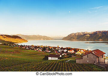Lavaux vineyards in spring, Switzerland