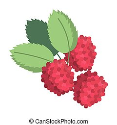 raspberry natural diet icon