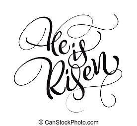 He is risen text isolated on white background. calligraphy...
