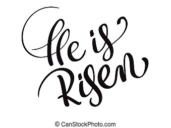 He is risen text isolated on white background. calligraphy and lettering