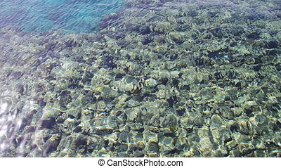 Sea Crystal Clear Blue Water Background - Sea crystal clear...