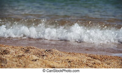 Sandy Beach of the Red Sea and the Sea waves on the...