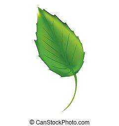 sticker green leaf icon