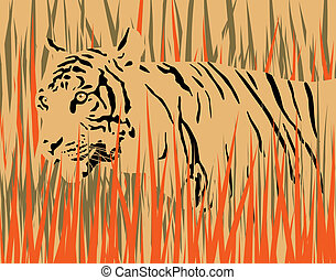 Tiger - Vector illustration of a tiger in dry grass with...