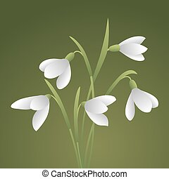 Bouquet of beautiful flowers. - Bunch of white snowdrops....