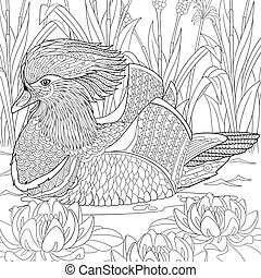 Zentangle stylized mandarin duck - Zentangle stylized...