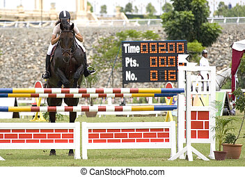 Equestrian - Image of an equestrian competitor in action.