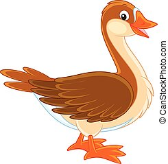 Goose - Vector illustration of a brown domestic goose...