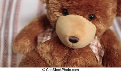 teddy-bear swinging from side to side close to - brown teddy...