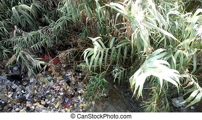 Garbage and bottles floating on water - Plastic...