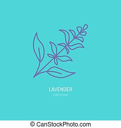 Vector line icon of lavender bunch. Herbal essential oils...