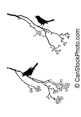 vector silhouette of the bird on branch tree