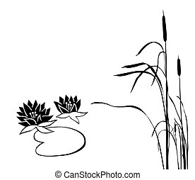 vector silhouette of the marsh plants on white background