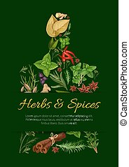 Cutting board poster with culinary herbs and spice - Cutting...