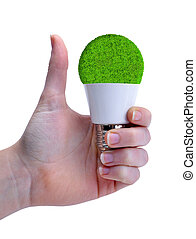 Hand with thumb up holding a eco LED bulb isolated on white background.