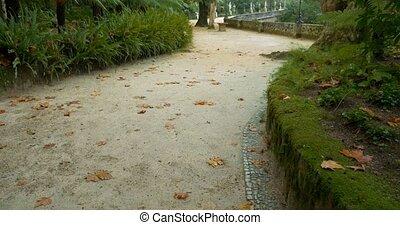 Amazing Quinta Da Regaleira And Gardens, Portugal