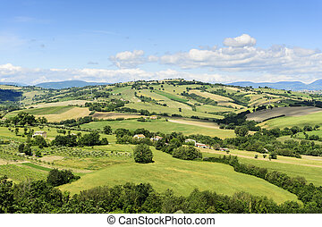 Typical landscape Marche - Typical landscape near Urbisaglia...
