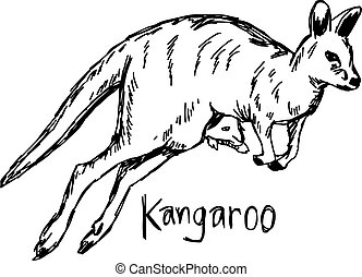 Kangaroo with its baby in the pocket - vector illustration...