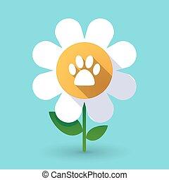 Long shadow daisy with an animal footprint
