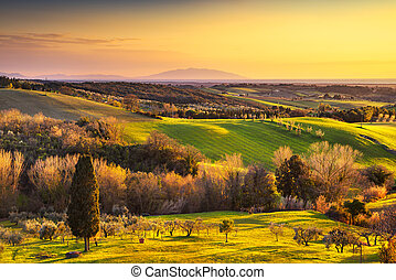 Maremma countryside, sunrise landscape. Elba island on...