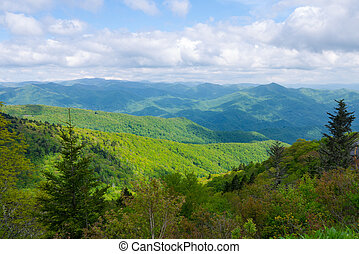 View from Roan Mountain - View of Appalachian Mountains from...