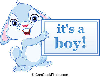 Baby bunny boy - Baby bunny holding its a boy sign