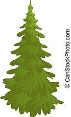 spruce, evergreen tree, vector illustration in flat style