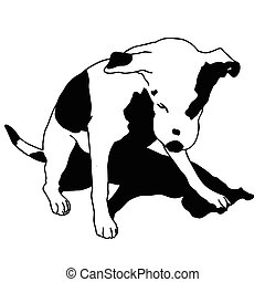 Vector black and white dog sitting. Smart and darling...
