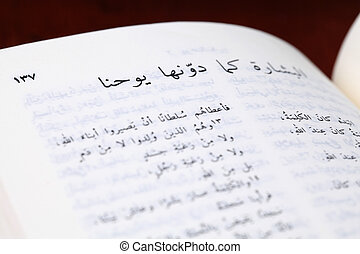 Gospel of John in Arabic