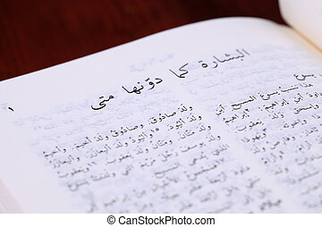 Gospel of Matthew in Arabic