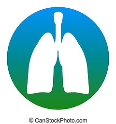 Human organs Lungs sign. Vector. White icon in bluish circle...