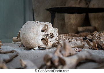 Ancient burial site showing skull - Ancient burial site with...