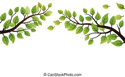 Green leaves frond - Spring branch with green leaves on...