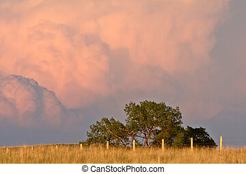 Cumulonimbus clouds in Saskatchewan