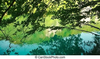 Lake in Plitvice National Park, Croatia HD