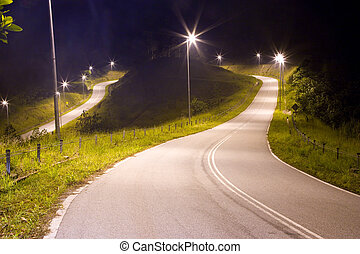 Tropical Country Road at Night - Image of a Malaysian...