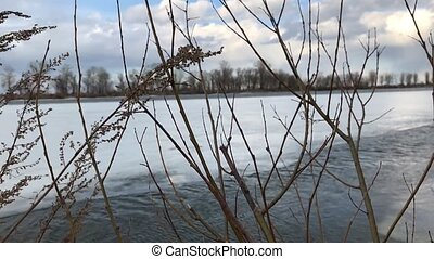 Leafless tree branches against a background of frozen river...