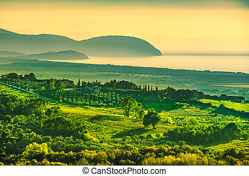 Maremma sunset panorama. Countryside, sea and Elba on...