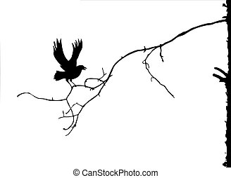 vector silhouette of the branch on white background
