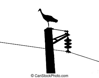 vector silhouette of the crane on electric pole