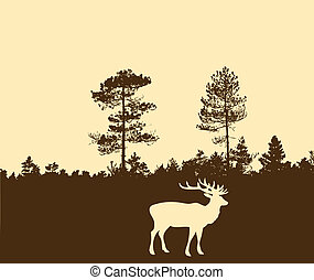 silhouette of the deer