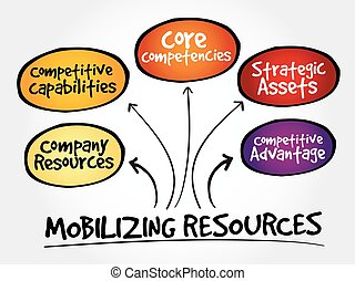Mobilizing resources for competitive advantage, strategy...