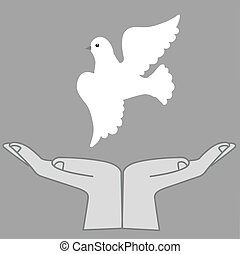 vector  illustration of the dove in hand