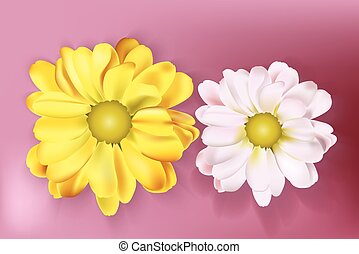 Spring flowers bouquet yellow and white card background. Beautiful Postcard for Weddings, Birthday, Anniversary. Vector illustration