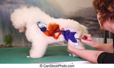 Creative art with a dog at pet salon - Creative art with a...