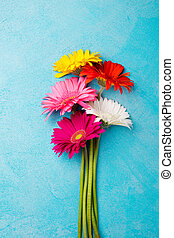Colorful bunch of gerbera flowers on blue stone background....