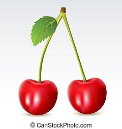 Cherry - Two cherries on a white background