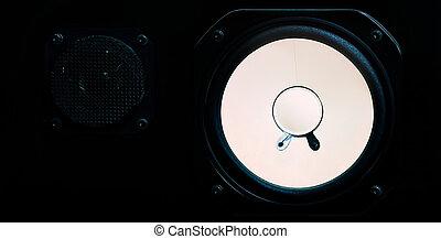 Loudspeaker - A speaker. The loudspeaker is black wood. The...