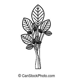 sketch silhouette tree plant with few leaves vector...