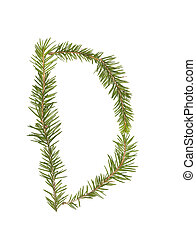 Spruce twigs forming the letter 'D'